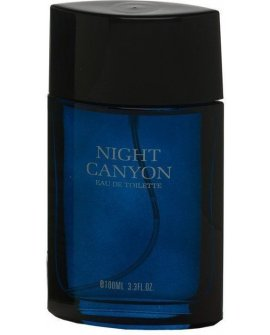 Real Time Night Canyon EDT 100ml, 8715658002796
